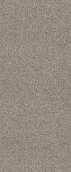 Shaw Floors Carpet Diem Cozy Taupe 00102_6E009