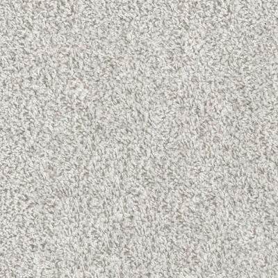 Shaw Floors Scandi Chic Snow Kissed 00101_6E015