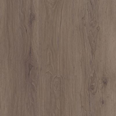 Shaw Floors SFA Adventure XL Hd+accent Sumatra 00824_700SA