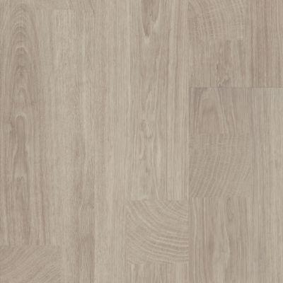 Shaw Floors SFA Adventure XL Hd+milled Wool 01044_701SA
