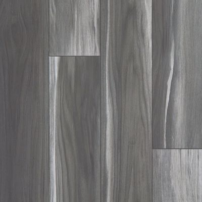 Shaw Floors SFA Adventure Hd+ Accent Shadow 00921_703SA