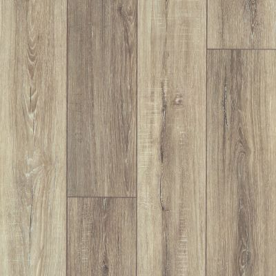 Shaw Floors SFA Adventure Hd+ Accent Sable 07083_703SA