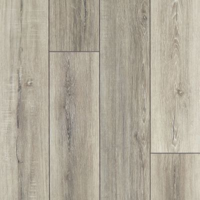 Shaw Floors SFA Adventure Hd+ Accent Basillica 07085_703SA