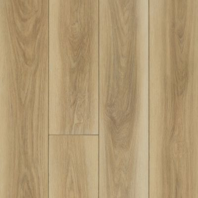 Shaw Floors SFA Awaken Hd+ Accent Desert Clay 06005_704SA