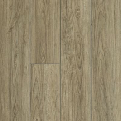 Shaw Floors SFA Awaken Hd+ Accent Feather 07076_704SA