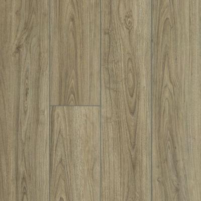 Shaw Floors SFA Awaken Hd+ Accent Feather 07076_704SA