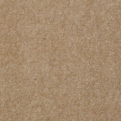 Shaw Floors Mercury Carpets Bahama Boardwalk 00012_7123D