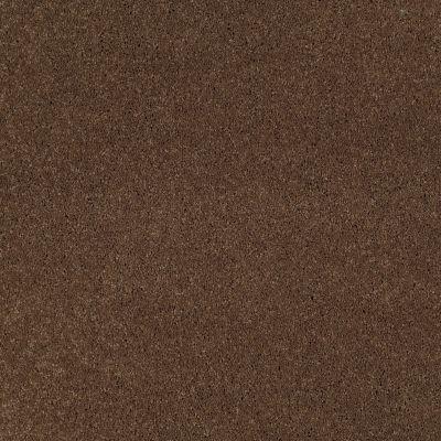 Shaw Floors Pelotage I Great Plains 00705_746A5