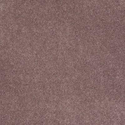 Shaw Floors Pelotage I Portland 00902_746A5