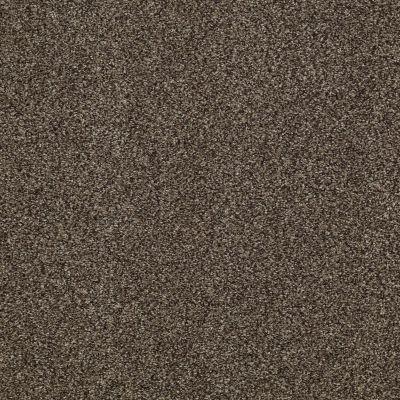 Shaw Floors Infinity Soft Zymes Bourbonnais Grey 00505_749J8