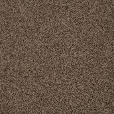 Anderson Tuftex SFA Beverly West Vicuna 00736_777SF