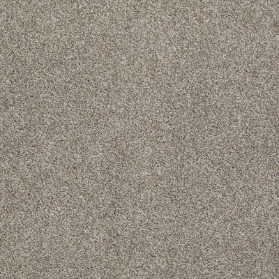 Anderson Tuftex Rockview Demure Taupe 00573_786DF
