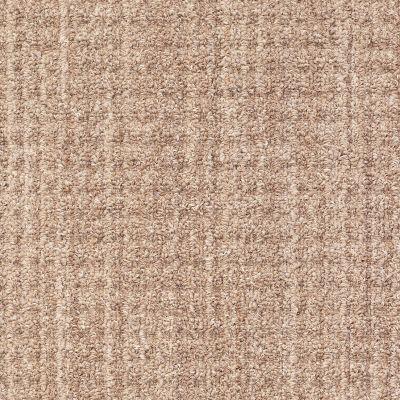Shaw Floors Infinity Abbey/Ftg Golden Treasures Driftwood 00703_7B3I3