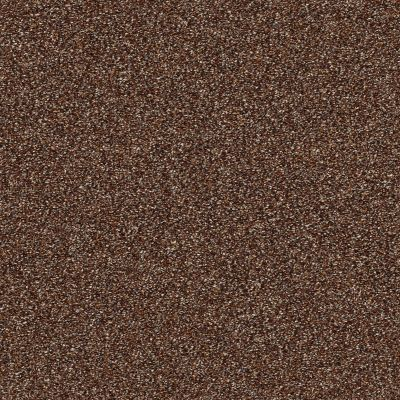 Shaw Floors Creative Elegance (floors To Go) Grand Feelings I Maple Leaf 00601_7B3I8