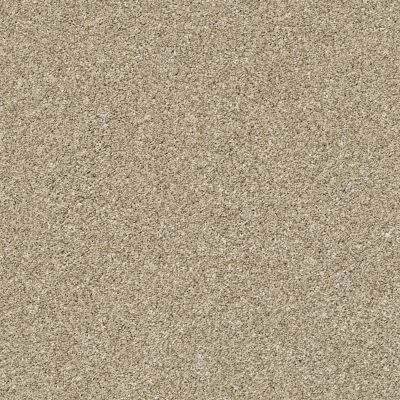 Shaw Floors Creative Elegance (floors To Go) Grand Feelings I Khaki 00700_7B3I8