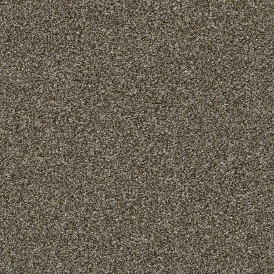 Shaw Floors Creative Elegance (floors To Go) Grand Feelings I Mahogany 00702_7B3I8