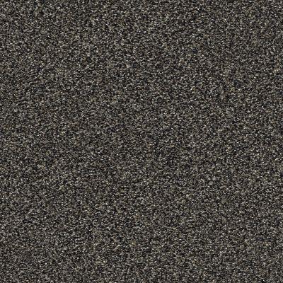 Shaw Floors Creative Elegance (floors To Go) Grand Feelings II Shadow 00504_7B3I9