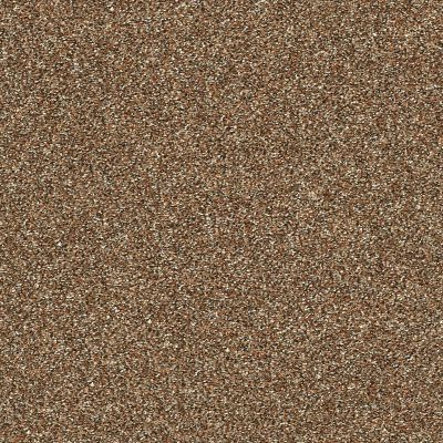 Shaw Floors Creative Elegance (floors To Go) Grand Feelings II Bronze 00602_7B3I9