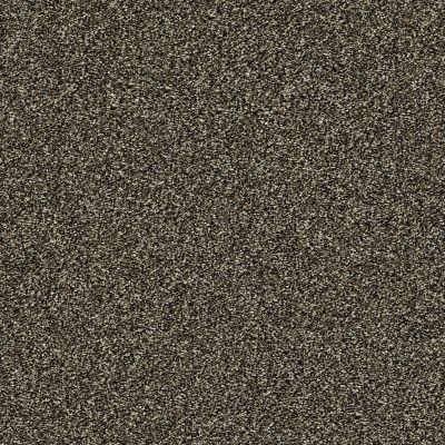 Shaw Floors Creative Elegance (floors To Go) Grand Feelings II Bark 00705_7B3I9