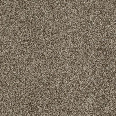 Shaw Floors Infinity Soft Zymes Lg Tibetan Plateau 00504_7E0D4