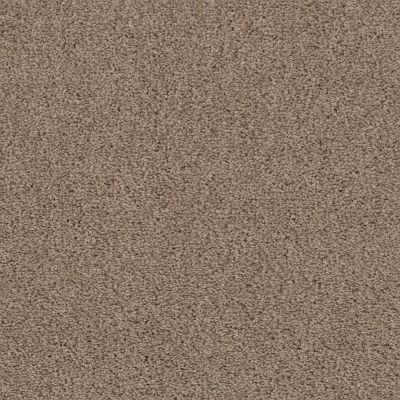 Shaw Floors Infinity Soft Heavenly Touch Lg Raw Wood 00720_7E0F2