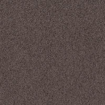 Shaw Floors Infinity Soft Heavenly Touch Lg Burma Brown 00752_7E0F2