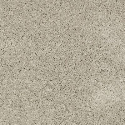Anderson Tuftex Shaw Design Center Turn It Up I Gray Whisper 00515_814SD