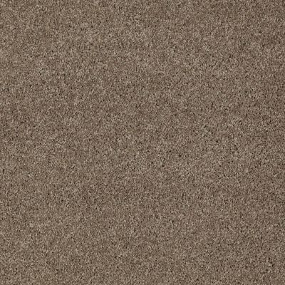 Anderson Tuftex Shaw Design Center Turn It Up I Simply Taupe 00572_814SD