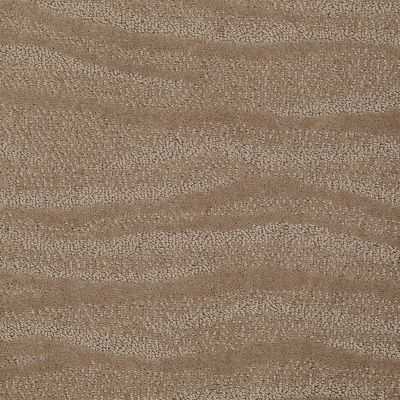 Anderson Tuftex Creative Elegance (floors To Go) Henderson Sable 00754_822AF