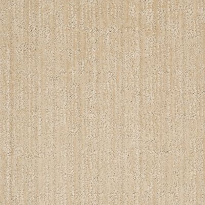 Anderson Tuftex Shaw Design Center Design Appeal Ivory Oats 00213_829SD