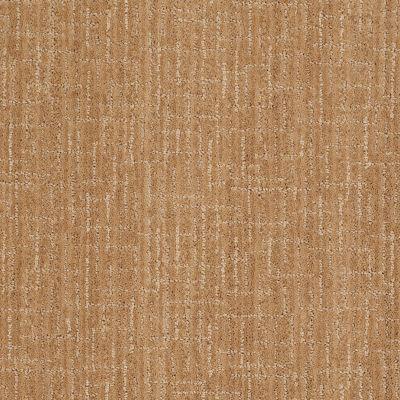 Anderson Tuftex Stainmaster Flooring Center Happy Design Dover Plains 00674_830DF