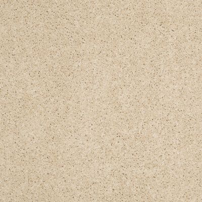 Anderson Tuftex SFA Way Better Icy Ivory 00122_852SF