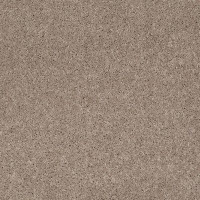 Anderson Tuftex SFA Way Better Mineralite 00574_852SF