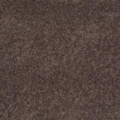 Anderson Tuftex SFA Way Better Smoky Quartz 00578_852SF