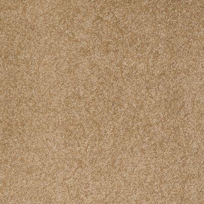 Anderson Tuftex SFA Gleeful Oak Plank 00274_854SF