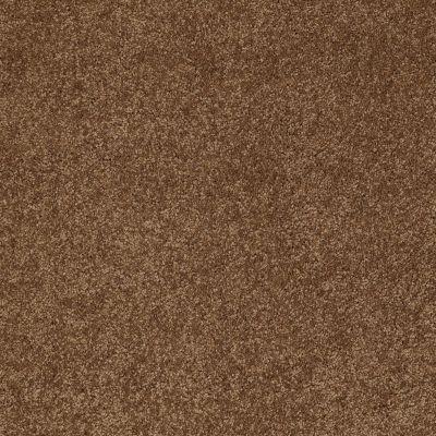 Anderson Tuftex SFA Gleeful Vintage Brown 00775_854SF