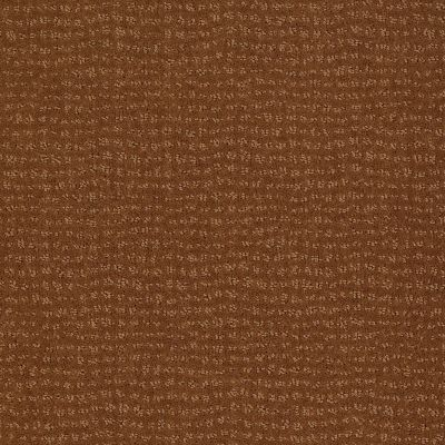 Anderson Tuftex SFA By My Side Roman Brick 00765_863SF