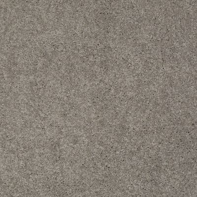 Anderson Tuftex Shaw Design Center Bel Lago Heavy Metal 00555_865SD