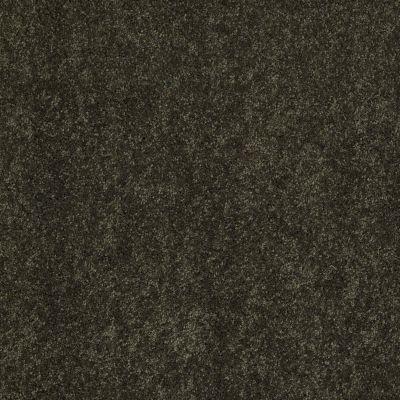 Anderson Tuftex Candor Parsley 00338_866DF