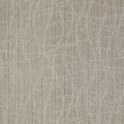 Anderson Tuftex Naturally Yours Ash Gray 00552_869DF