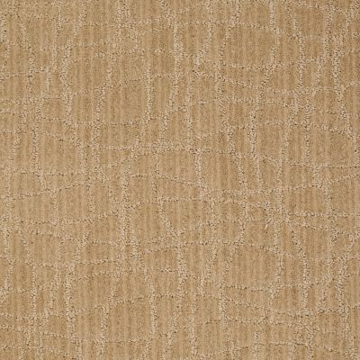 Anderson Tuftex Shaw Design Center Exclusive Style Crushed Cashew 00263_869SD
