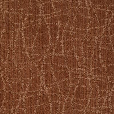 Anderson Tuftex Shaw Design Center Exclusive Style Brushed Clay 00685_869SD