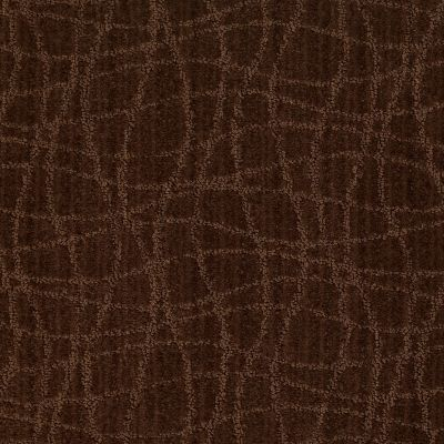 Anderson Tuftex Shaw Design Center Exclusive Style Catskill Brown 00777_869SD