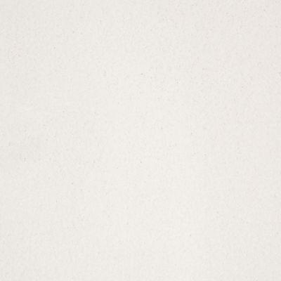 Anderson Tuftex SFA Sleek Silhouette Snowbound 00111_872SF