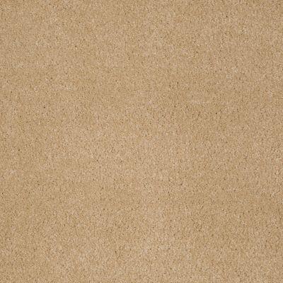 Anderson Tuftex SFA Sleek Silhouette Sunspot 00263_872SF