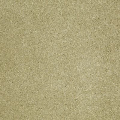 Anderson Tuftex SFA Sleek Silhouette Sprout 00323_872SF