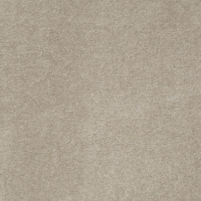 Anderson Tuftex SFA Sleek Silhouette Limestone 00552_872SF