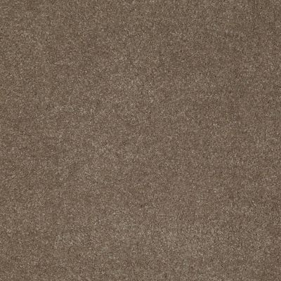 Anderson Tuftex SFA Sleek Silhouette Misty Taupe 00575_872SF