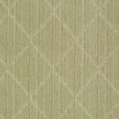 Anderson Tuftex Shaw Design Center Living Good Woven Reed 00313_874SD