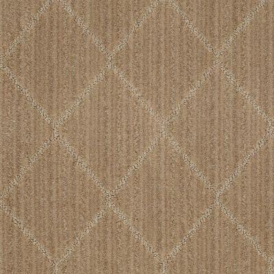 Anderson Tuftex Shaw Design Center Living Good Fine Grain 00784_874SD